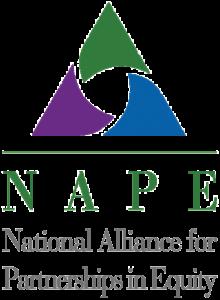 NAPE logo without background 1